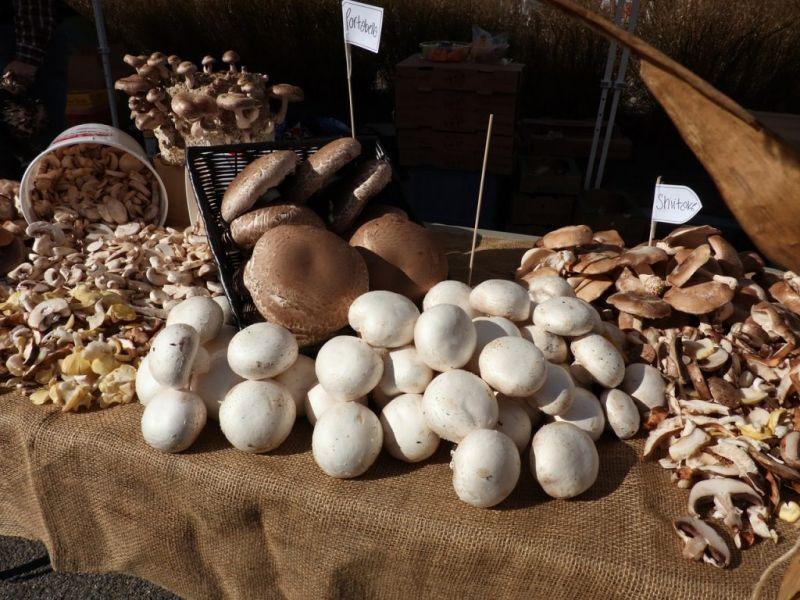 le-5-delizie-culinarie-dell-autunno